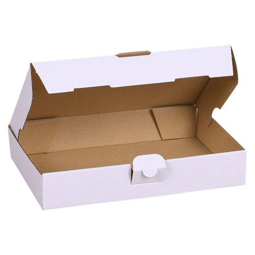 Maxibriefkarton 240x160x45 mm - Weiß