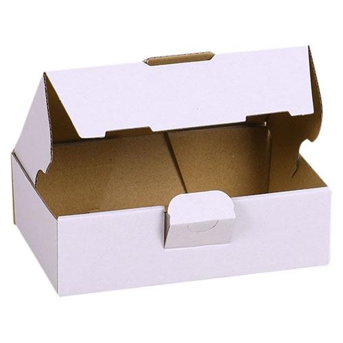 Maxibriefkarton 160x110x50 mm - Weiß