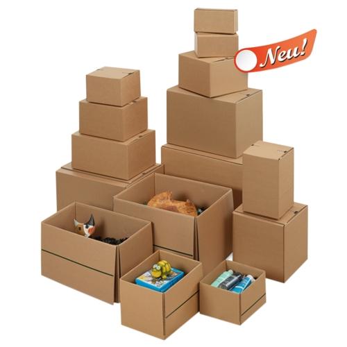 Wiederverschließbare Kartons 240x210x135 mm